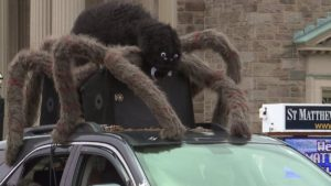 Annual York Halloween Parade brings entertainment and candy through th...