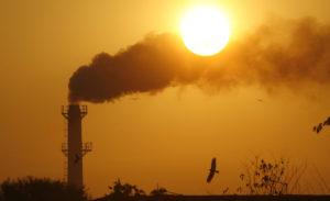 World needs to make near-revolutionary change to avoid imminent climat...