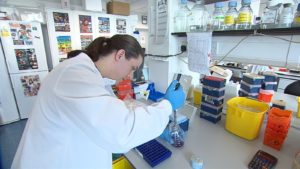 1,200 events countrywide for Science Week
