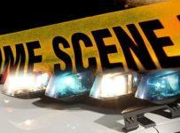 SCHP: Car strikes, kills pedestrian on U.S. 25 Bypass near Greenwood |...