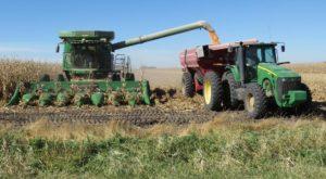 Tariffs have cost Nebraska ag economy up to $1.2 billion, says Nebrask...