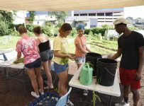 Neighborhoods: Farmers markets still going strong