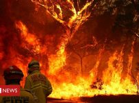 Australia fires: The huge economic cost of Australia's bushfires