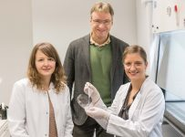 Precision scaffolds tailor biomaterials to promote wound healing – Phy...