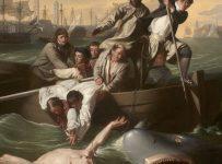 Curators' Choice on Art and Politics