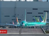 Boeing's 'culture of concealment' to blame for 737 crashes